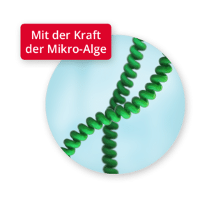 Mikroalgen-Wirkstoff Spiralin